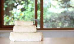 タオル  / Towel