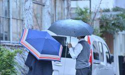 折畳み傘 / Folding umbrellas