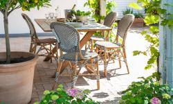 ダイニングチェア / イサベル / Dining Chair / Isabell